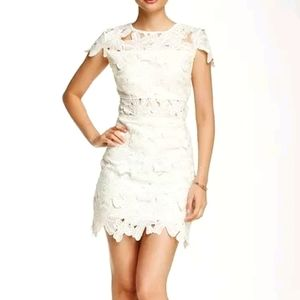 ROMEO AND JULIET COUTURE LACE MINI DRESS IN IVORY